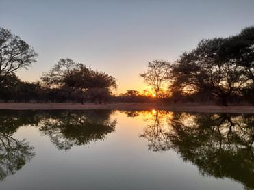 Limpopo Hunting Safari South Africa.jpg