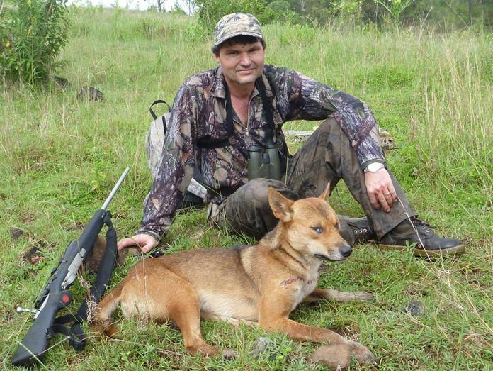 Australia Dingo Predator Hunting