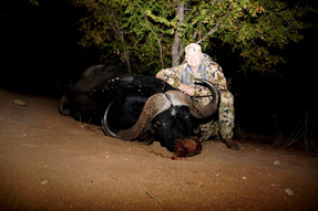 Dangerous Game Hunting AussieJohn Cape Buffalo Bull June 2019 Limpopo Hunting S