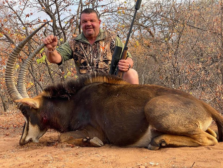 Limpopo Plains Game Hunting