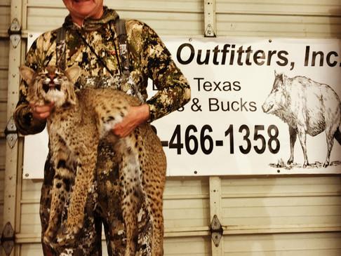 Bucket-list Bobcat... Texas