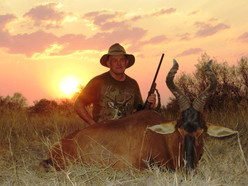 Large Plains Game Hunting Safari Africa