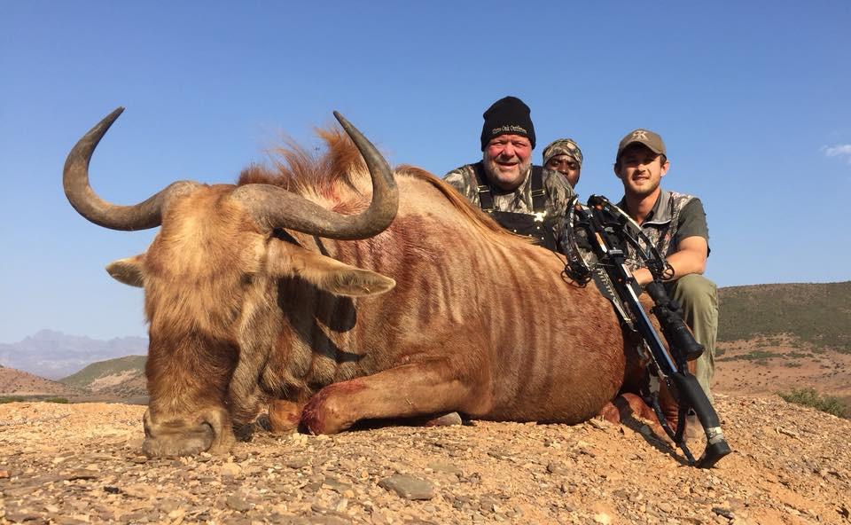 Golden Wildebeest.jpeg. Bruce Hunnicut Texas Taken With Raven Crossbow