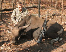 Banteng Hunting With Markus From Downunder Taxidermy Studio & Hunting Outfitters
