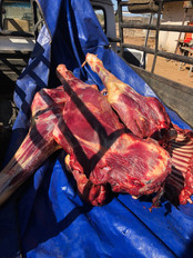 Feeding The Locals With Quality Meat Rachero Safaris Limpopo South Africa