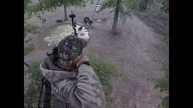 East Texas Hog Hunting With AussieJohn Plus Bonus Buck