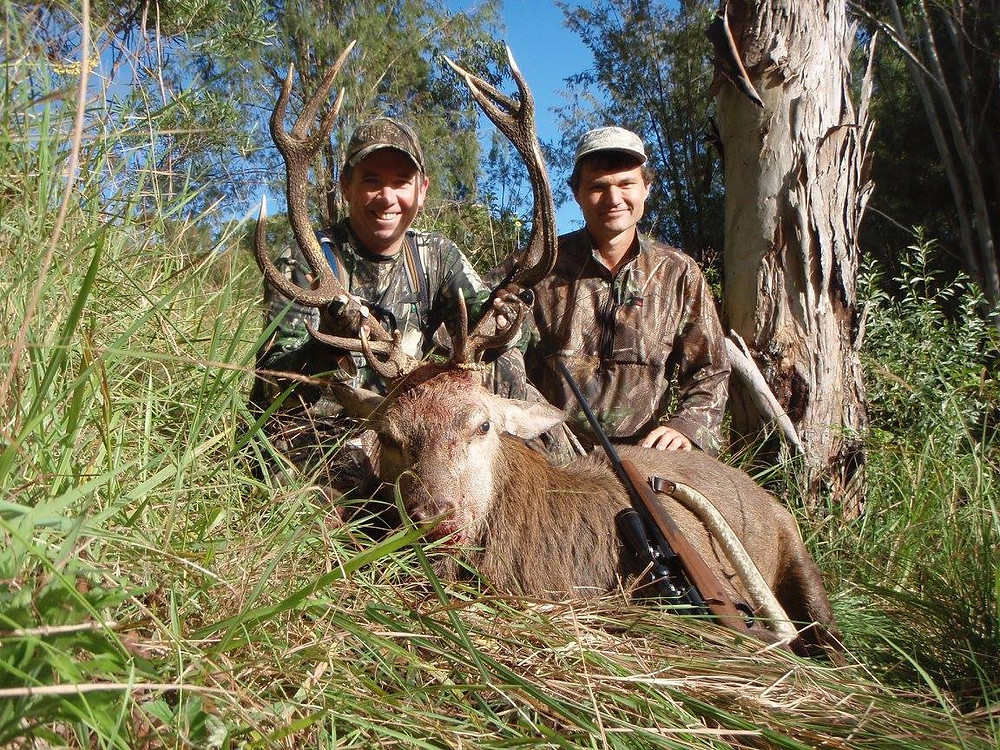 Red Deer Hunting With Downunder Taxidermy & Hunting Outfitters