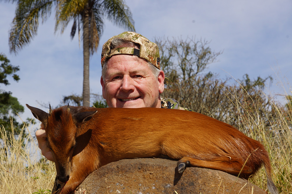 Red Duiker Tiny Ten South Africa Hunting Package