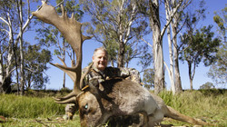 AussieJohn 2013 Fallow Buck
