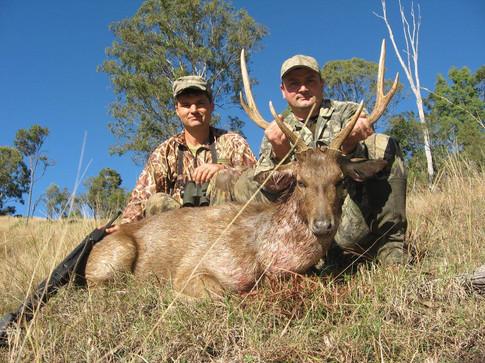 Queensland Deer Hunting Safari