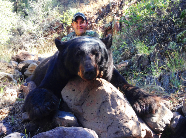 San Carlos Black Bear Hunting Tag