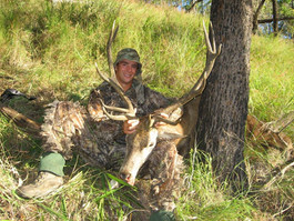 Great Red Stag From Queensland Australia With Guide Markus Michalowitz Downunder Taxidermy Studio & Outfitters