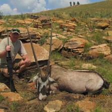 Plains Game Gemsbok - Africa Safari Outf