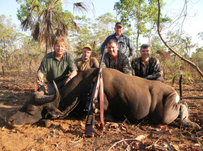 Banteng Hunting In Australia Downunder Taxidermy Studio & Hunting Outfitters