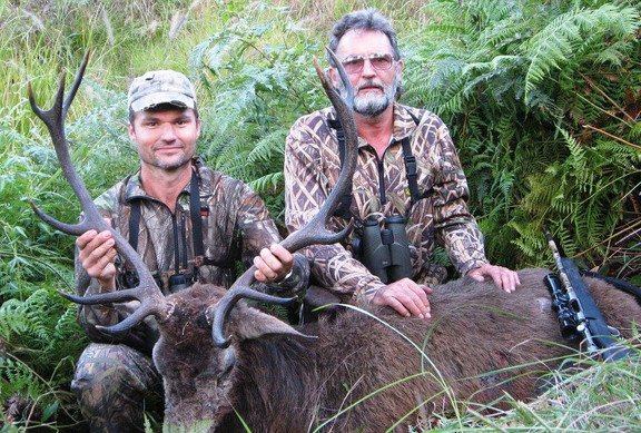 Queensland Australia Red deer Hunting Guides & Outfitters Downunder Taxidermy Studio & Guiding