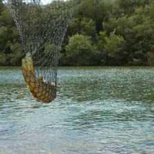 Trout Fishing Dullstroom South Africa Packages Available