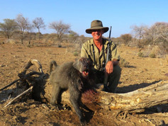 Baboon Hunt With Downunder Taxidermy Studio & Guide Services
