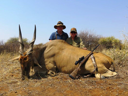 Big Game Hunting Packages With Downunder Taxidermy Studio & Booking Services