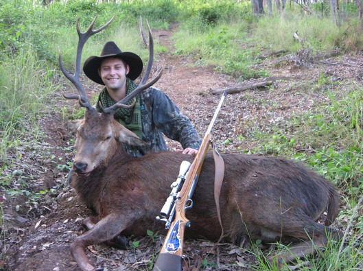 Rifle Hunting Queensland Red Stag