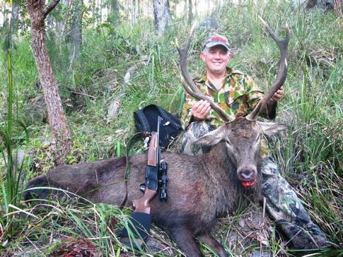 Queensland Free Range Red Deer Hunting