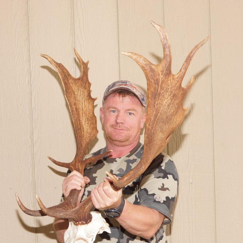 Huge Free Range Fallow Buck