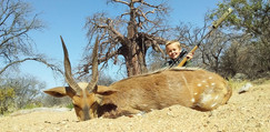 Young Crossberg Successful Hunt