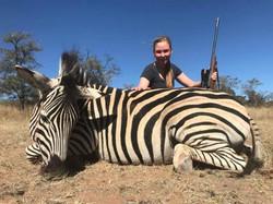 Zebra_Limpopo_Hunting_Safari_jpegs