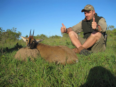 Duiker One Of The Tiny Ten Hunting With Ranchero Safaris