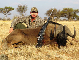 Black Wildebeast Hunting With Outfitter Downunder Taxidermy Studio & Guide Services