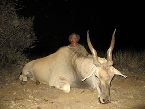 Hunt Eland In Africa With Dowunder Taxidermy Studio & Guiding Services
