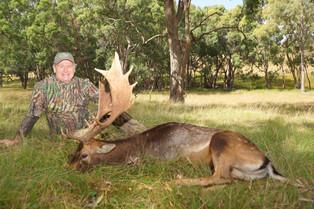 Fallow Buck Dirt Nap!
