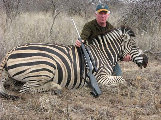 Zebra Large Plains Game Hunting