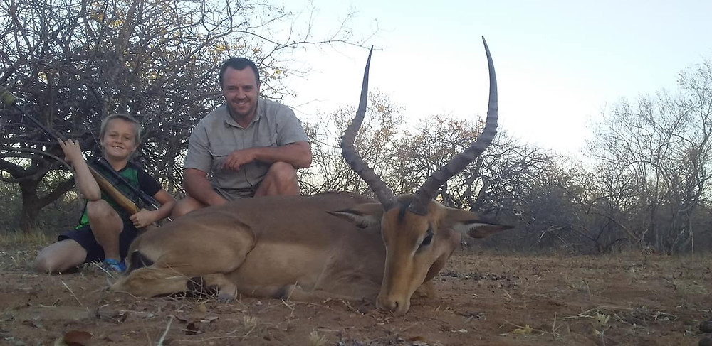 A Great Impala - Plains Game Species Limpopo South Africa