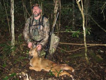 Preditor Hunting In Australia