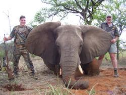 1SHOT_SAFARIS_Limpopo_Hunting_jpeg
