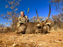 Waterbuck Hunt Safari In Limpopo