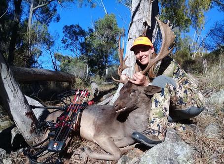 Fallow Deer Hunting NSW Australia 2018