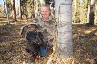 Turkey Hunting AZ The Kaibab Strip