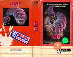 Larvae72dpi