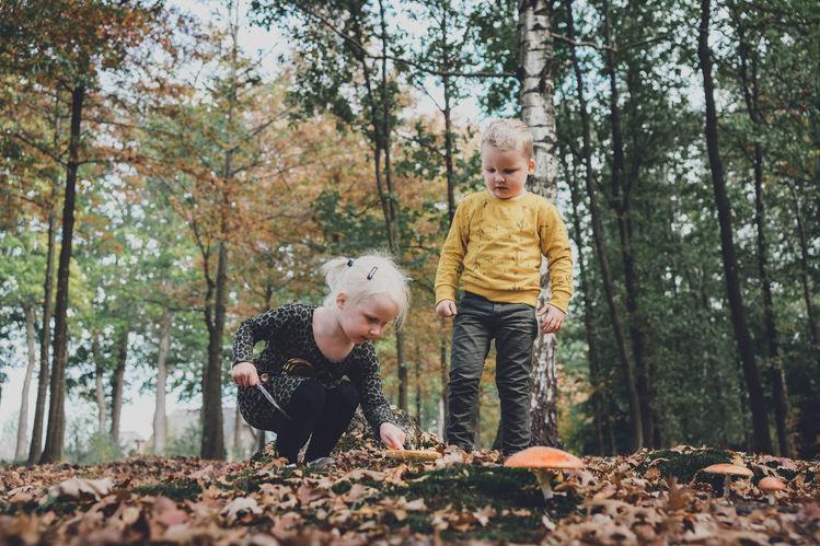 Lysign-fotografie-en-vormgeving_gezinssh