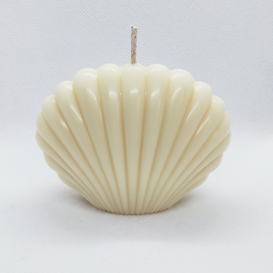 Coconut 'Spanish Shell'