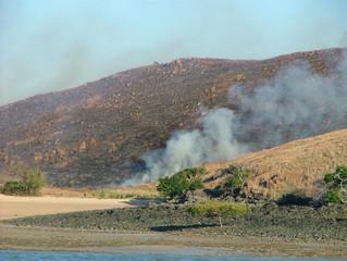 Fires on Hunter Island