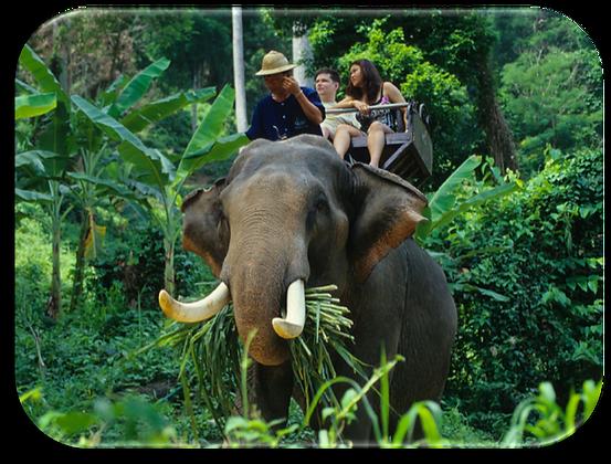 泰国Thailand
