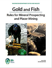 2020 Gold & Fish Book.jpg