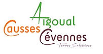 Logo - CC Aigoual C C.JPG