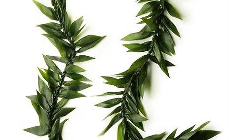 Maile Ti Leaf Lei or Similar