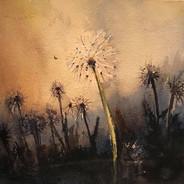 18x18 cm akvarell