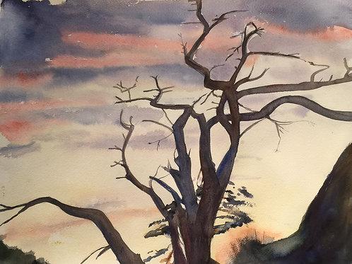 Ett träds fundering - 80x60 cm