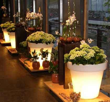 Pots lumineux décoration mariage