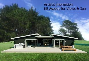 Artist's Impression NE Aspect.jpg